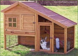 Consigli utili per tenere gli amici conigli in casa la - Prezzi per costruire una casa ...