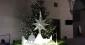 A Natale scegliere alberi veri fa bene alla salute e all'ambiente