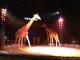 A Firenze gran ritorno del Circo Medrano
