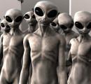 Toscana terra felice per le specie aliene invasive