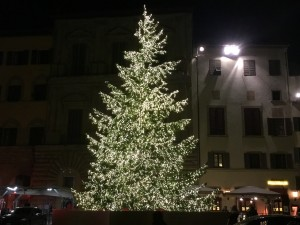 albero di natale - foto giornalista Franco Mariani