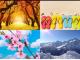 Quale stagione ami di più? Pochi giorni è sarà ufficialmente estate