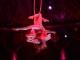 Dal 4 al 6 gennaio 2019 a Firenze ALIS con i migliori artisti dal Cirque du Soleil e del Nouveau Cirque ALIS