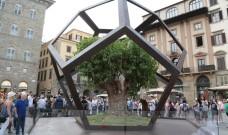"""Un dodecaedro e un albero di gelso in Piazza Signoria presenta la mostra """"La botanica di Leonardo"""""""