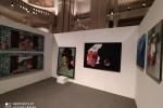 mostra fondazione zeffirelli (11)