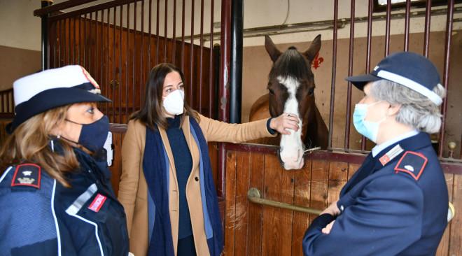 Visite didattiche per le scuole alla Polizia municipale a cavallo